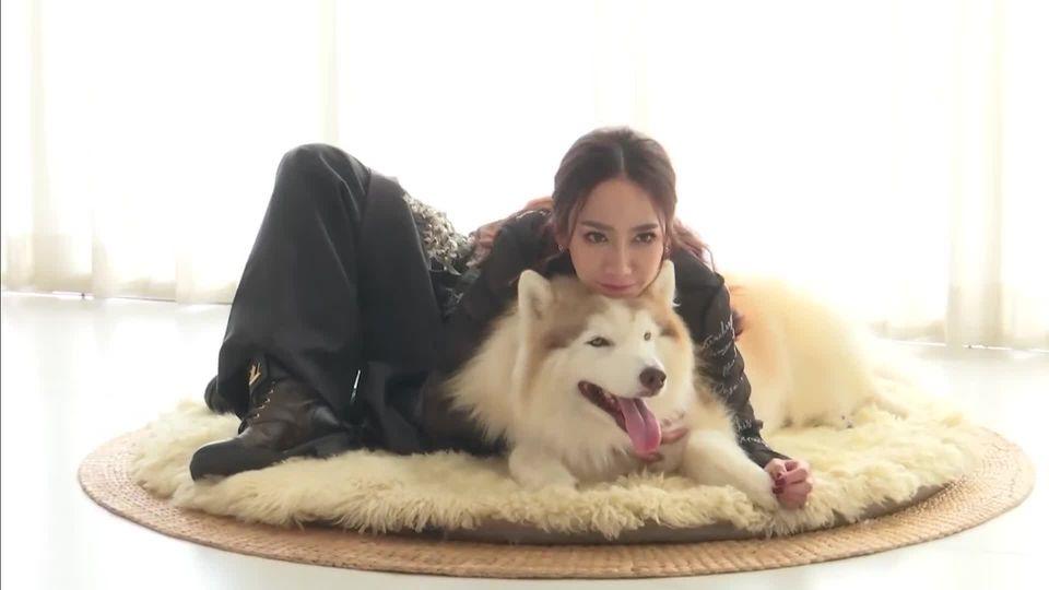 เบื้องหลังความน่ารักของ อั้ม พัชราภา และน้องหมา ในการถ่ายปฏิทินช่อง 7HD | เฮฮาหลังจอ