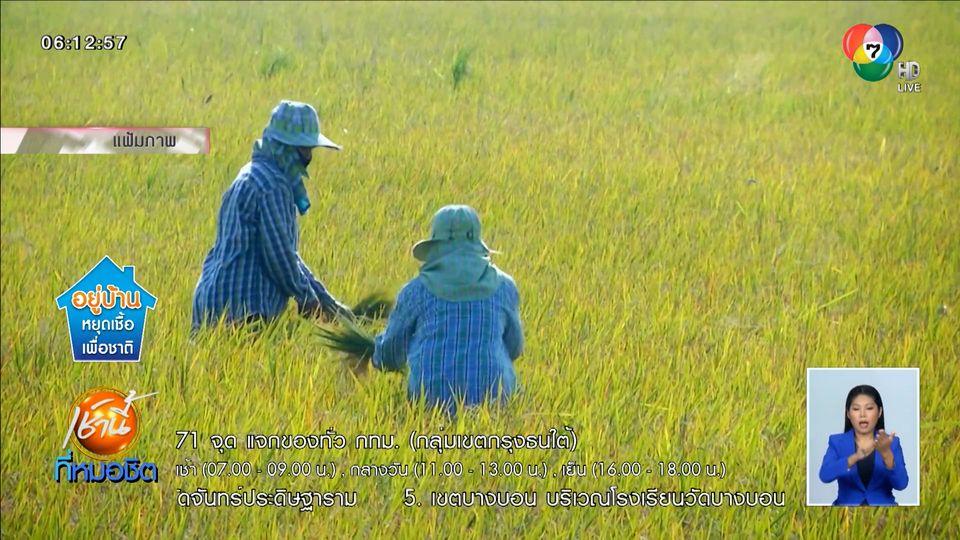 เผยตัวเลขเกษตรกรรอรับเงินเยียวยาโควิด-19 กว่า 7.5 ล้านครัวเรือน