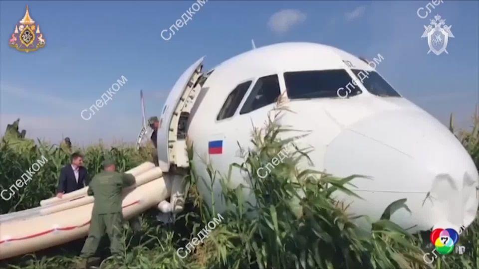เครื่องบินอูราล แอร์ไลน์ส ชนนก ลงจอดฉุกเฉินกลางไร่ข้าวโพด