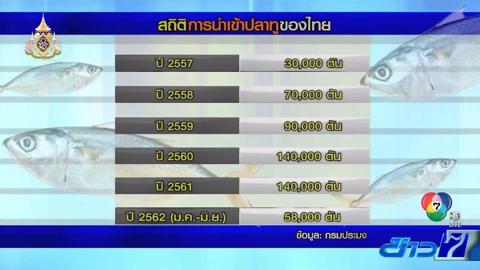 วิกฤตปลาทูไทยใกล้สูญพันธุ์ อาจต้องปิดอ่าวระยะยาว