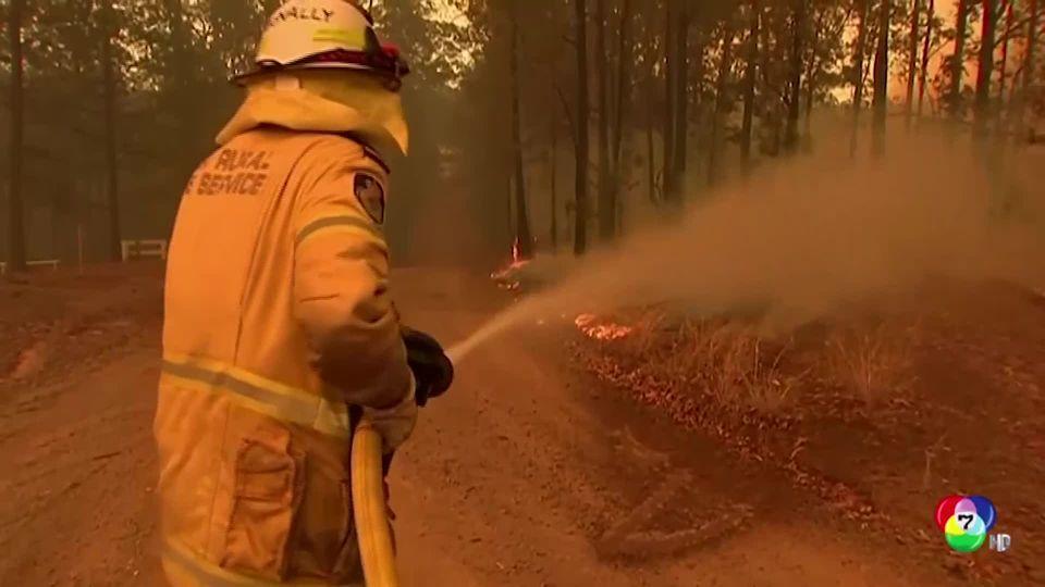ไฟป่าออสเตรเลียยังวิกฤตหนัก จนท.นับพันเร่งควบคุม พบโคอาลาตายแล้วกว่า 350 ตัว