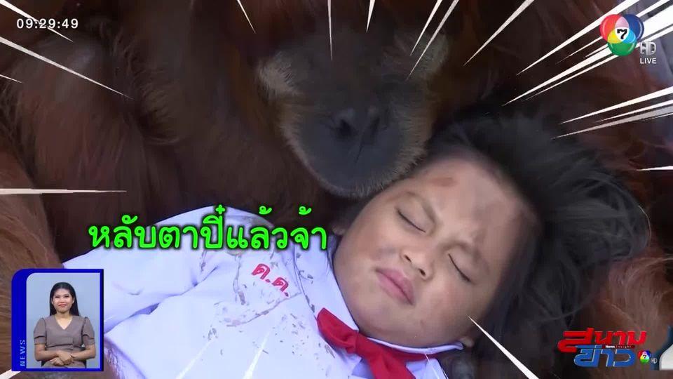 ความน่ารักของ บูบู้ ลิงอุรังอุตังในกองละคร ธิดาวานร น่ารัก ใจดี ใครๆ ก็หลงรัก : สนามข่าวบันเทิง