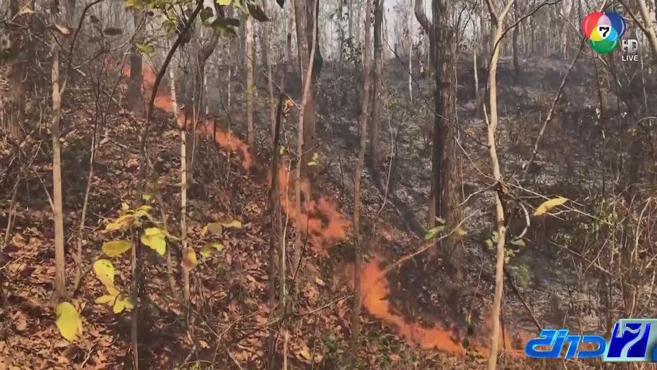 ค่าฝุ่น PM2.5 เพิ่มขึ้น 7 จังหวัดภาคเหนือ หลายพื้นที่ยังเกิดไฟป่าลุกลาม