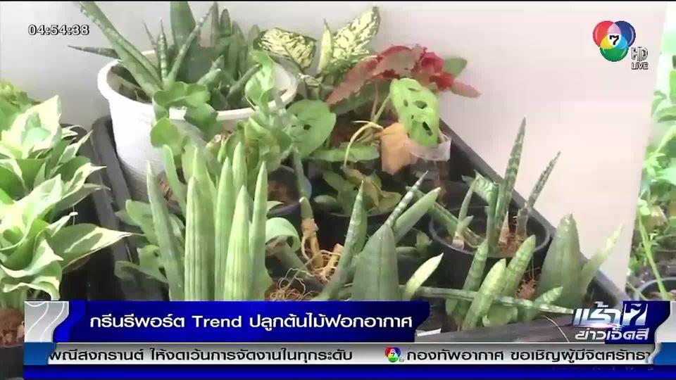 Green Report : Trend ปลูกต้นไม้ฟอกอากาศ