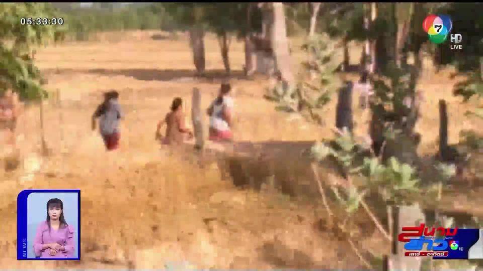 วิ่งป่าราบ!! นาทีเจ้าหน้าที่บุกจับนักพนันกลางทุ่งนา วิ่งฝุ่นตลบจนลืมวัย