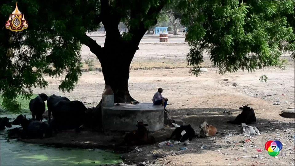 อินเดียตอนเหนือร้อนจัดทะลุ 50 องศาเซลเซียส