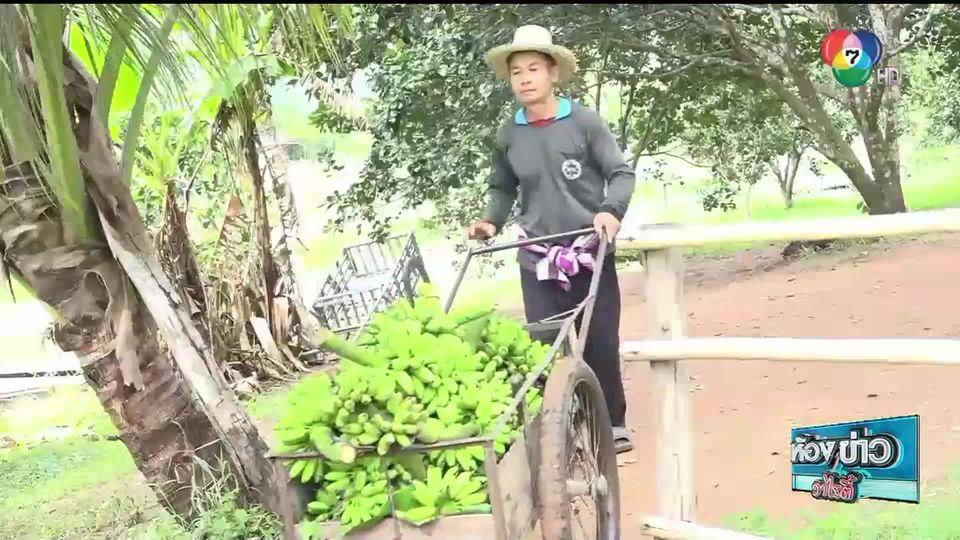 วิถีภูธร ตะลอนเมืองกรุง : ล่องเรือชมสวนส้มโอ อ.เกษตรสมบูรณ์