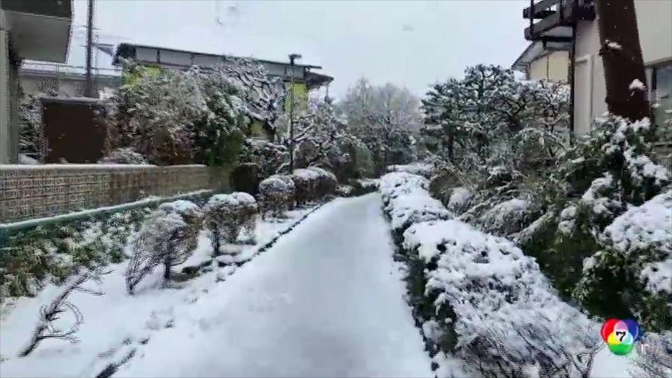 หิมะตกนอกฤดูกาลท่ามกลางซากุระบานที่ญี่ปุ่น
