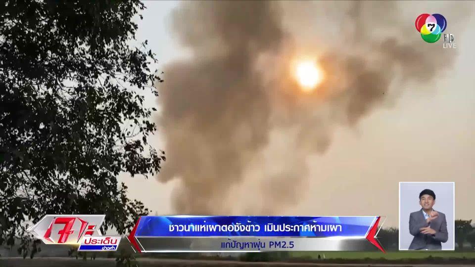 ยังไม่หยุด!! ชาวนาแห่เผาตอซังข้าว เมินประกาศห้ามเผา แก้ปัญหาฝุ่น PM2.5