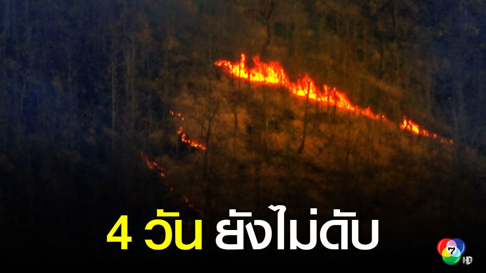 ไฟป่าภูทอกเชียงคาน 4 วัน ยังไม่ดับ