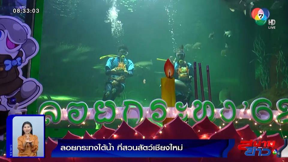 ภาพเป็นข่าว : ที่เดียวในโลก! สวนสัตว์เชียงใหม่ จัดกิจกรรมพิเศษลอยกระทงใต้น้ำ