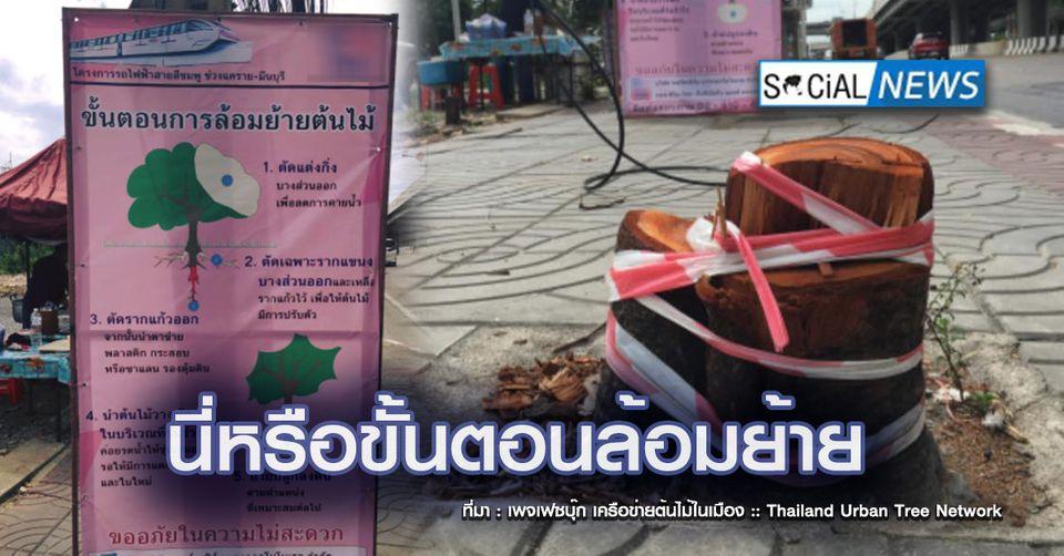 จวกยับ! โครงการก่อสร้างรถไฟฟ้าสายสีชมพู ตัดต้นไม้เหลือแต่ตอ ชี้แค่ล้อมย้าย