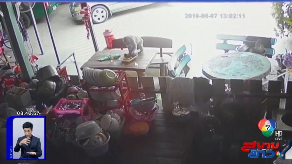 ภาพเป็นข่าว : เจ้าของบ้านติดกล้องวงจรปิดจับหัวขโมย พอเปิดดูถึงกับอึ้ง!