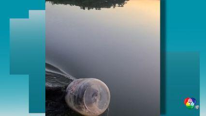 นักท่องเที่ยวเข้าช่วยหมีหัวติดถังที่ทะเลสาปแห่งหนึ่งในสหรัฐฯ