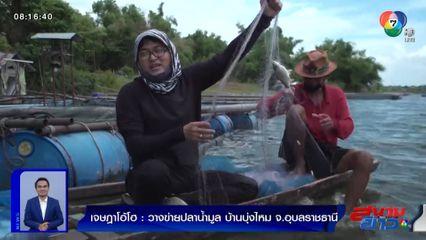 เจษฎาโอ้โฮ : วางข่ายปลาน้ำมูล บ้านบุ่งไหม จ.อุบลราชธานี