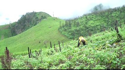 เสียงสาละวินแม่ฮ่องสอนถิ่นนี้หาใช่พื้นที่ป่าเถื่อน
