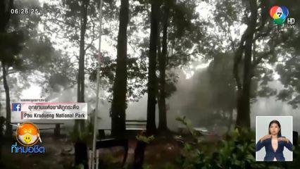 ภูกระดึง ฝนถล่ม-ลมแรง ทางขึ้นลงเขาลำบาก-อันตราย แนะ นทท.เลื่อนเดินทาง