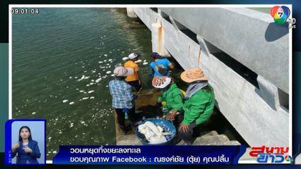 ภาพเป็นข่าว : วอนหยุดทิ้งขยะลงทะเล เพื่อสิ่งแวดล้อม-สัตว์น้ำ