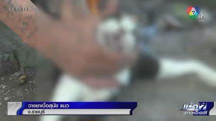 วางยาเบื่อสุนัข แมว จ.ราชบุรี