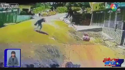 ภาพเป็นข่าว : สุดอันตราย เด็กใช้รถฝึกเดินไหลไปตามถนน