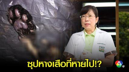 ดร.กุ้ง ถามเจอซุปหางเสือ แต่ผิดแค่มีซากไก่ฟ้าหลังเทา