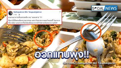 จบกันมื้อเที่ยง! หนุ่มโพสต์ซื้ออาหารคลีนทาน เจอแมลงสาบโผล่ในข้าว