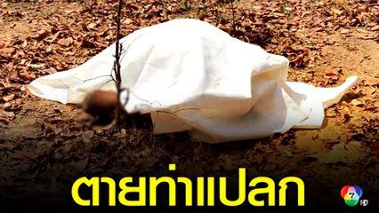 พบชายนั่งตายปริศนาในป่า ตำรวจเร่งสอบสวนหาสาเหตุ