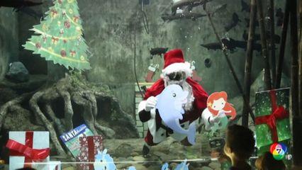 ซานตาคลอสดำน้ำกับปลาโลมา ในสวนสัตว์เม็กซิโก รับเทศกาลคริสต์มาส