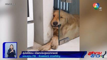 ภาพเป็นข่าว : เอ็นดู! สุนัขขี้ร้อน เอาหน้าเบียดประตูขอตากแอร์เย็นๆ