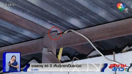 ภาพเป็นข่าว : ลุงผวา! เห็นคนแอบเอาระเบิดมาวาง ที่แท้เป็นตุ๊กแก