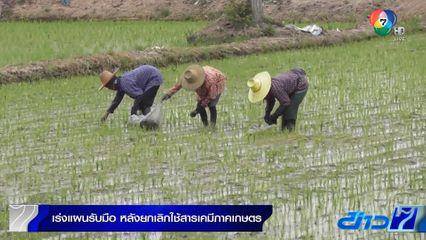 เร่งแผนรับมือ หลังแบนสารเคมีเกษตรอันตราย 3 ชนิด
