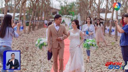 ภาพเป็นข่าว : ฮือฮา! เนรมิตสวนยางให้เป็นงานแต่งงานในฝัน