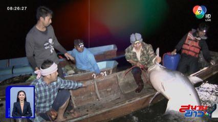 อนุวัตจัดให้ : 10 ปี ที่คิดถึง นักล่าปลาน้ำจืดที่ใหญ่ที่สุดในโลก