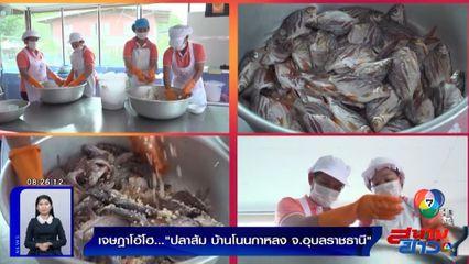 เจษฎาโอ้โฮ : ปลาส้ม บ้านโนนกาหลง จ.อุบลราชธานี