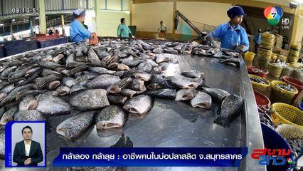 กล้าลองกล้าลุย : อาชีพคนในบ่อปลาสลิด จ.สมุทรสาคร ตอน 3