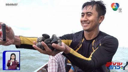 อนุวัตจัดให้ : คว้าหอยแครง จ.สุราษฎร์ธานี