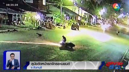 ภาพเป็นข่าว : หนุ่มขี่ จยย.เคราะห์ร้าย! สุนัขเดินตัดหน้า ชนล้มกลิ้งทั้งคู่