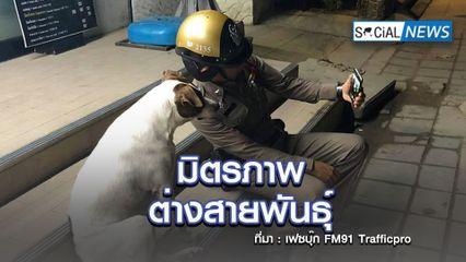 โซเชียลเอ็นดู ภาพคุณตำรวจนั่งเซลฟี่กับน้องหมา มิตรภาพต่างสายพันธุ์
