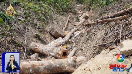 พบกลุ่มอิทธิพลลักลอบตัดถนน เข้าไปบุกรุกทำลายป่าสงวนแห่งชาติ จ.สงขลา