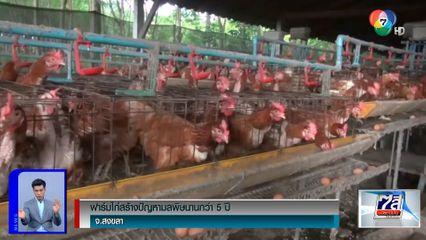 ฟาร์มไก่สร้างปัญหามลพิษนานกว่า 5 ปี จ.สงขลา
