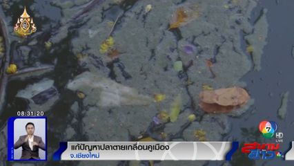 เทศบาลนครเชียงใหม่ติดตั้งเครื่องเติมอากาศ แก้ปัญหาปลาตายเกลื่อนคูเมือง