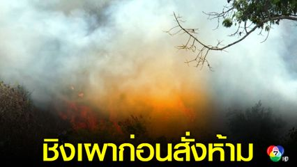 เกษตรกร จ.ตาก ชิงเผาพื้นที่การเกษตร ก่อนดีเดย์อีก11 วันห้ามเผาเด็ดขาด