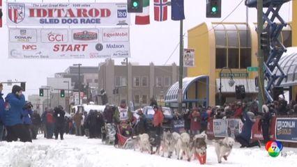 ปชช.แห่ชมการแข่งขันสุนัขลากเลื่อนที่รัฐอะแลสกา