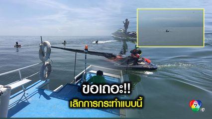 แก๊งเจ็ทสกีซิ่งดูวาฬบรูด้า ชี้ผิดกฎหมาย-ก่อกวน