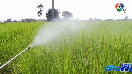 ก.เกษตรฯ เตรียมตั้งโต๊ะรับคืน 3 สารเคมีอันตราย