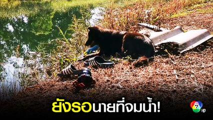 เศร้า!สุนัขยังรอเจ้านายที่พลัดตกน้ำเสียชีวิต
