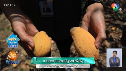 เกษตรกรวอนรัฐช่วยฟื้นฟู นอกเหนือเงินเยียวยาพิษโควิด-19
